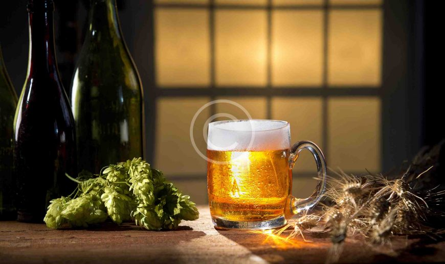 Brewery Certification Is Your Way to Understanding Beer